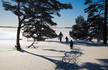 Februarimorgon vid Ingaröfjärden