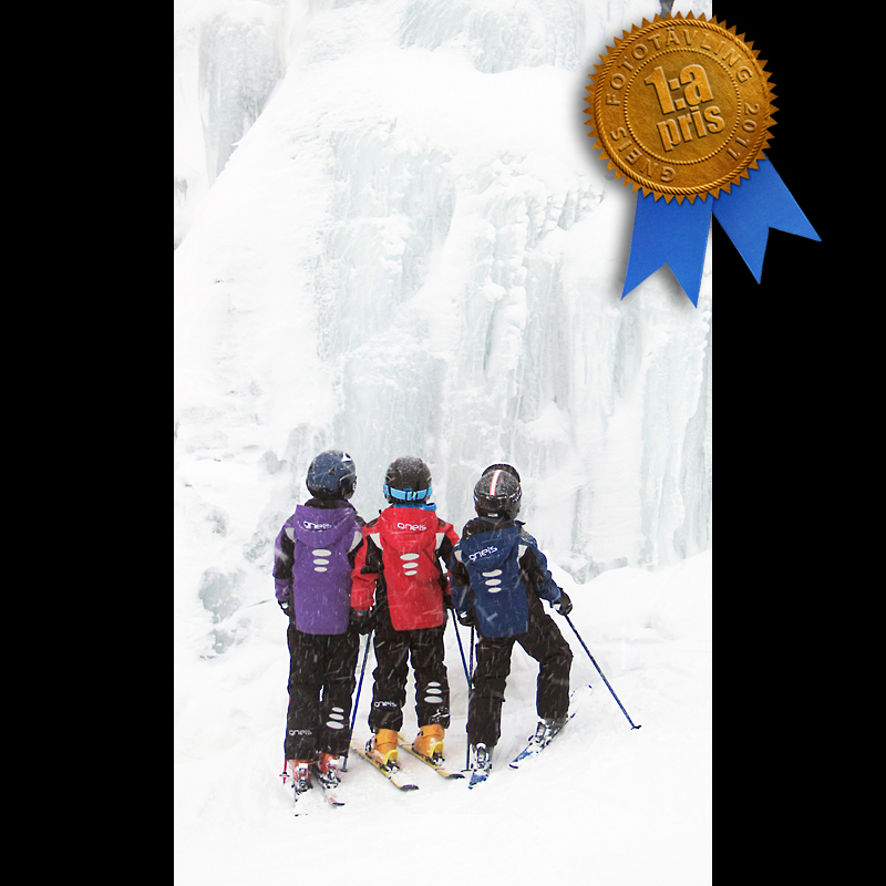 Vinnare i Gneis fototävling 2011